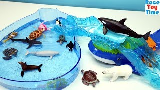 Ocean Whale Island Adventure Playset Ania plus Fun Sea Animals Toys For Kids