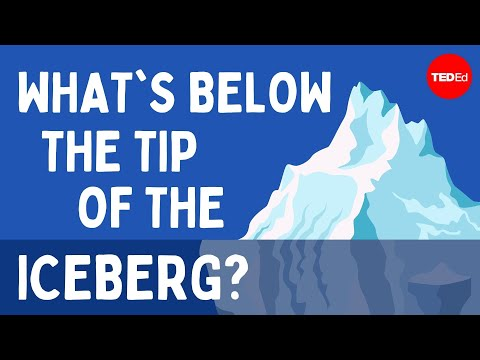 What's below the tip of the iceberg? - Camille Seaman