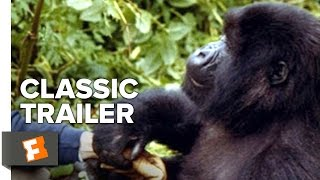 Gorillas in the Mist (1988) - Official Trailer