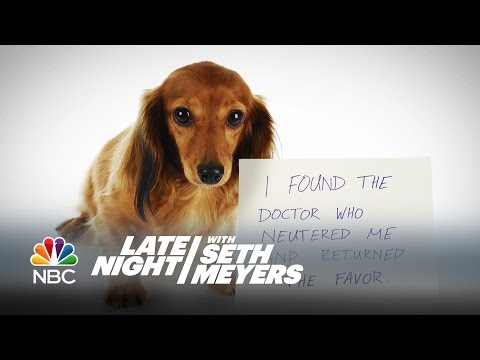 Extreme Dog Shaming - Late Night with Seth Meyers