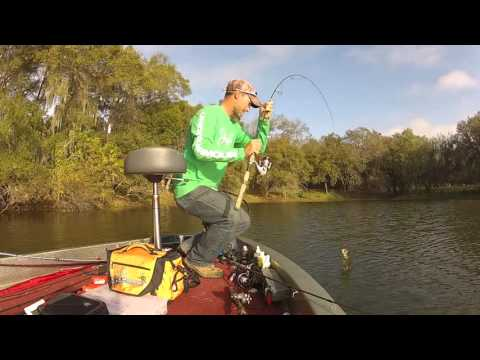 central florida post spawn bass fishing