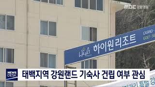 태백지역 강원랜드 기숙사 건립 여부 관심