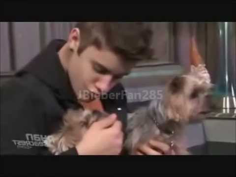 Funny Pictures of Justin Bieber Justin Bieber Funny Moments