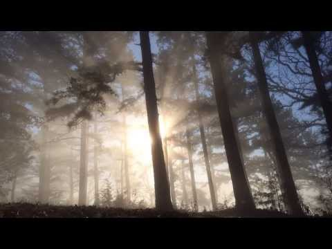 A film about the spirit of the Ozarks. By Edward C. Robison III If you like this movie be sure to check out my Time-Lapse Photography Book on Kickstarter whi...