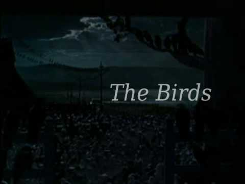 Alfred Hitchcock's The Birds (1963) new Movie Trailer.