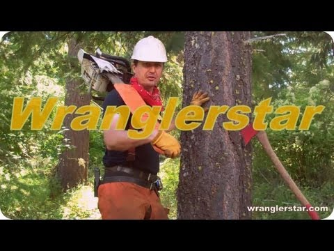 Trees To Timbers Chainsaw Mill part 2/3