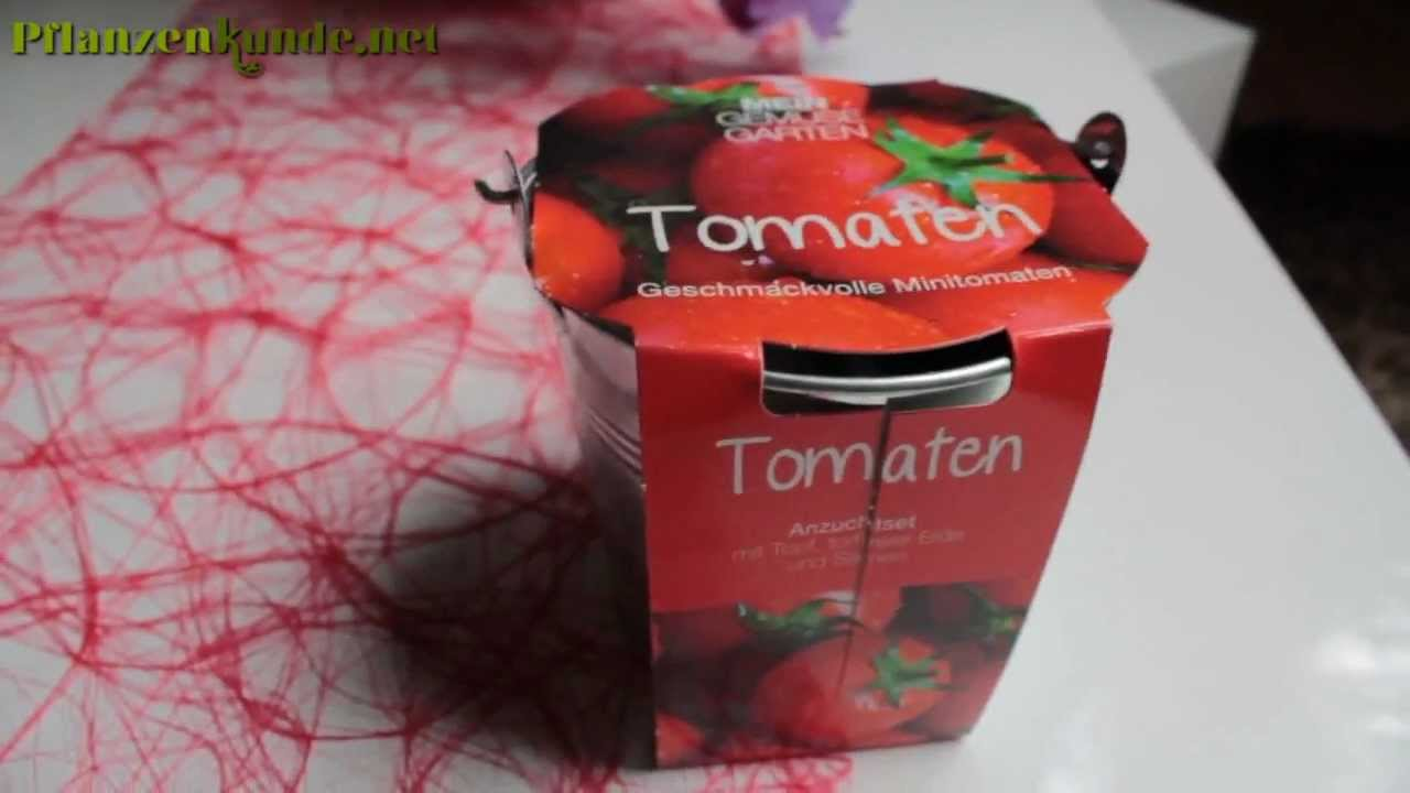 tomaten eimer tomatenpflanzen im eimer f r die fensterbank youtube. Black Bedroom Furniture Sets. Home Design Ideas