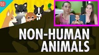 Non-Human Animals: Crash Course Philosophy | REACTION