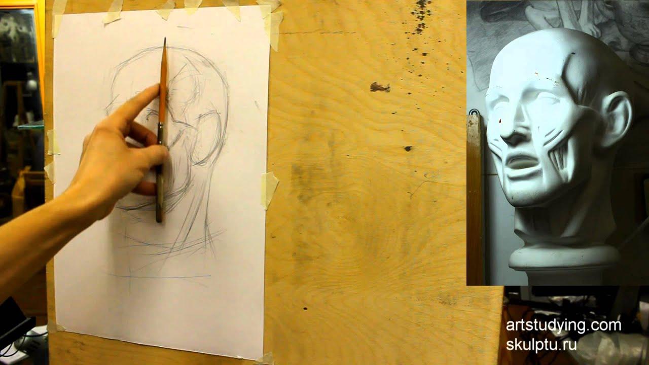 Рисовать портрет уроки видео