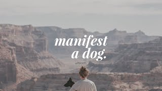 Manifest a Dog (Forced) Subliminal
