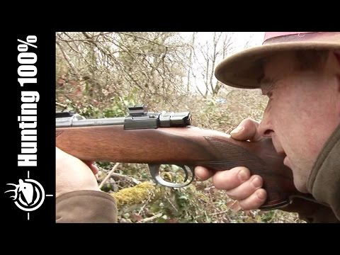 Wild Boar Hunting In France - video chasse au sanglier