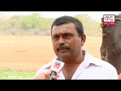 anuradhapura suffers|eng