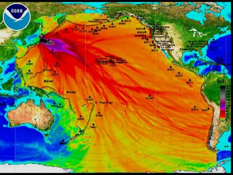 Agua radioactiva de Fukushima esta envenenando todo el océano pacífico