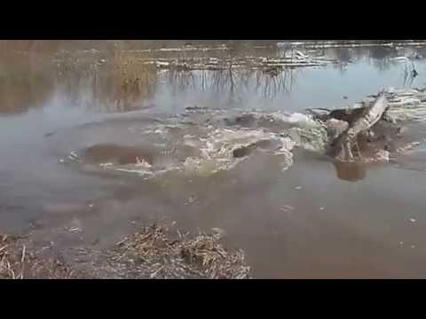 СУБГЬАНАЛЛАГЬ_Водянная всепоглощающая дыраhttp://youtu.be/-Q1agcpx9f4