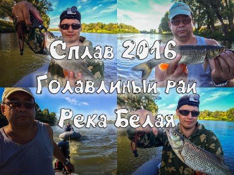 кордяга рыбалка