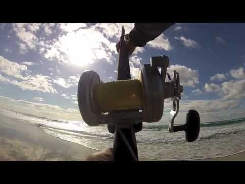 Shark Fishing Fraser Island - A First Run