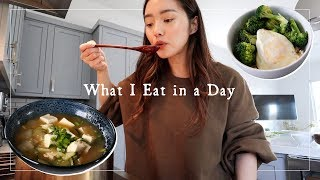 What I Eat in a Day 🇰🇷Easy Korean Recipes