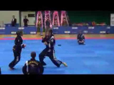 Hapkido World Championships Korea 2013 (Brisbane highlights) Image 1