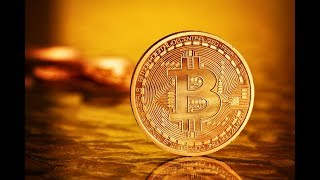 Make Money 10000$ Per Day With Bitcoin | Without Investment | Earn 1 BTC In 1 Day