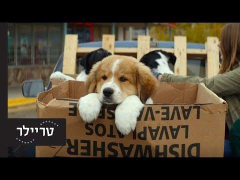 נשמה של כלב 2 - טריילר קצר - 16.5 בקולנוע