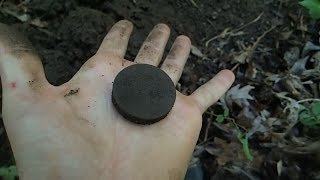 Metal Detecting in the river and around a old house foundation !