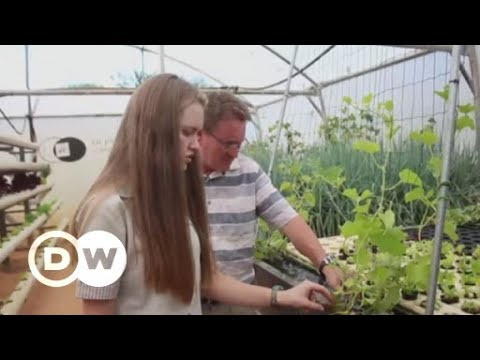 Simple and green aqua farming in South Africa   DW English