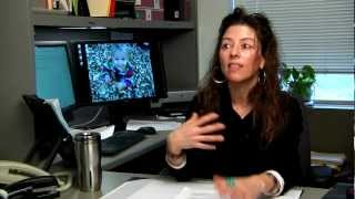 Rochelle Dalla in UNL Child, Youth and Family Studies