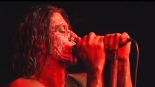 Black Light Burns - Coward (Official Video)