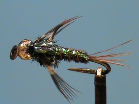 Fly Tying A Beadhead Flashback Pheasant Tail Nymph With Jim ...