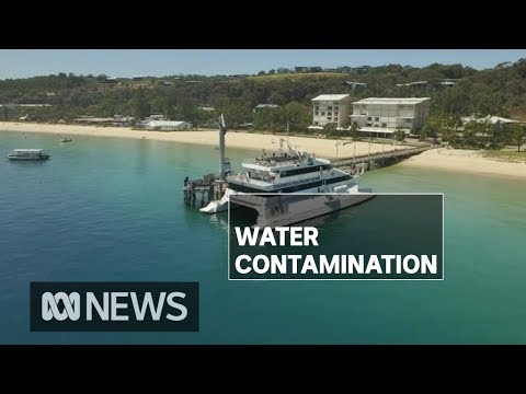 Authorities investigate contamination of drinking water at Queensland resort island | ABC News