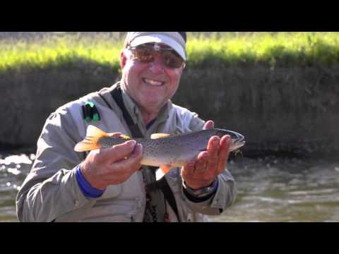 YELLOWSTONE BACK COUNTRY TROUT ADVENTURE