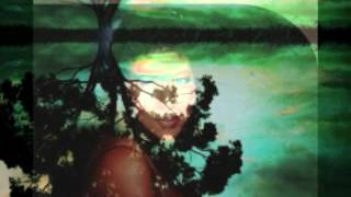 Watch Aretha Franklin United Together video