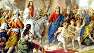 Domingo de Ramos, inicio de Semana Santa - Homilía del Padre Roberto Mena