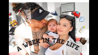 A Week In The Life | Trip to Wellington