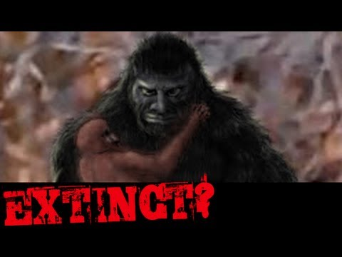 The EXTINCT? Podcast #30 - Team Tazer Bigfoot