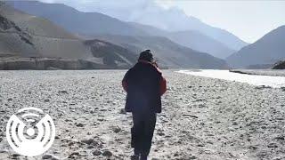 Watch Walkmen Four Provinces video