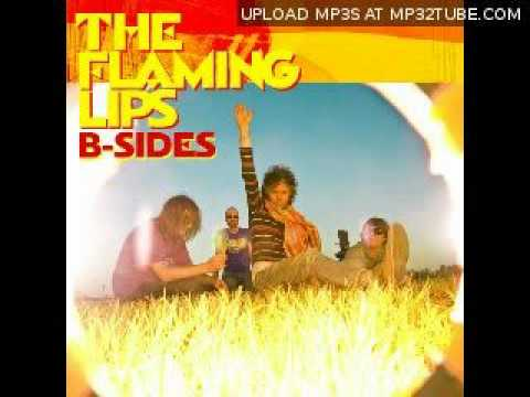 Flaming Lips - What Does It Mean