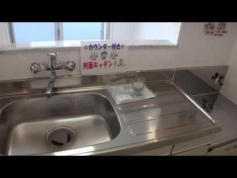 南城市大里字稲嶺 2DK 5万円 アパート