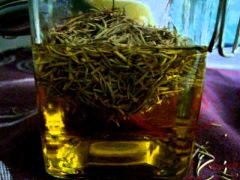 Elabora tu propio aceite de plantas