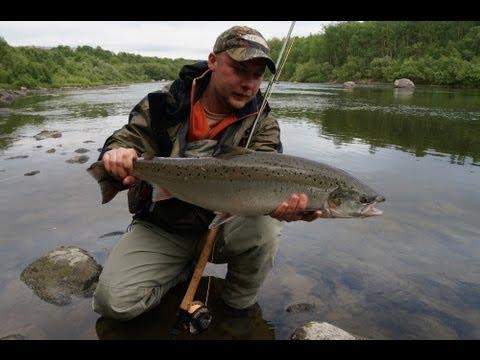 Как поймать семгу на реке
