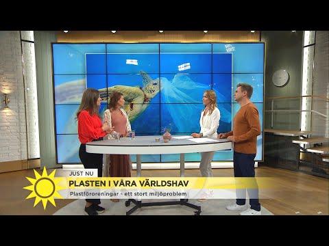 """Plasten är överallt – """"Det går inte att blunda längre"""" - Nyhetsmorgon (TV4)"""