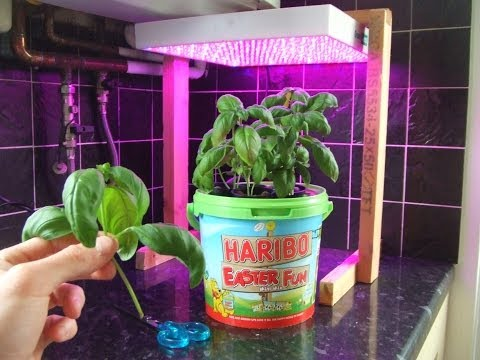 Hydroponics Growing System Homemade Diy Deep Water Culture Dwc  8