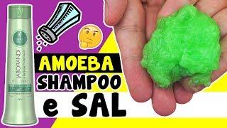 Como fazer AMOEBA de SHAMPOO e SAL (slime) | TIO LUCAS
