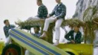 Vídeo 35 de Beach Boys