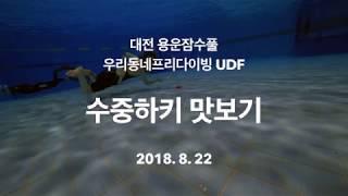 수중하키 경기 프리다이빙 대전 용운 잠수풀에서~~ Underwater Hockey UWH UDF Freediving