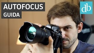Autofocus: cos'è e come funziona | Guida fotografia • Ridble
