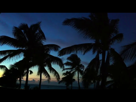 Musica para Relax Total - Relajarse y Meditar - Dormir profundamente -  Sueño - Descanso #