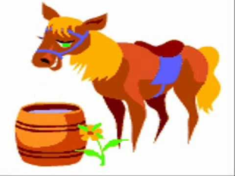 Animals Video.  Farm Animals.  Farm Activities