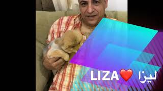 WITH SECOND BEST DOG (LIZA)❤️