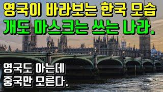 영국이 바라보는 한국 모습. 개도 마스크를 쓰는 나라. 영국도 아는데 중국만 모른다.